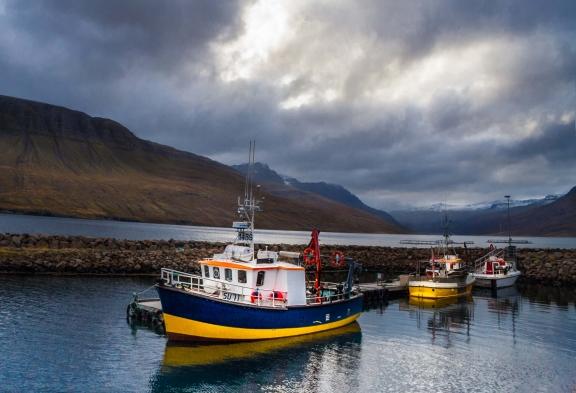 Iceland-Mjoifjordur_BOATS