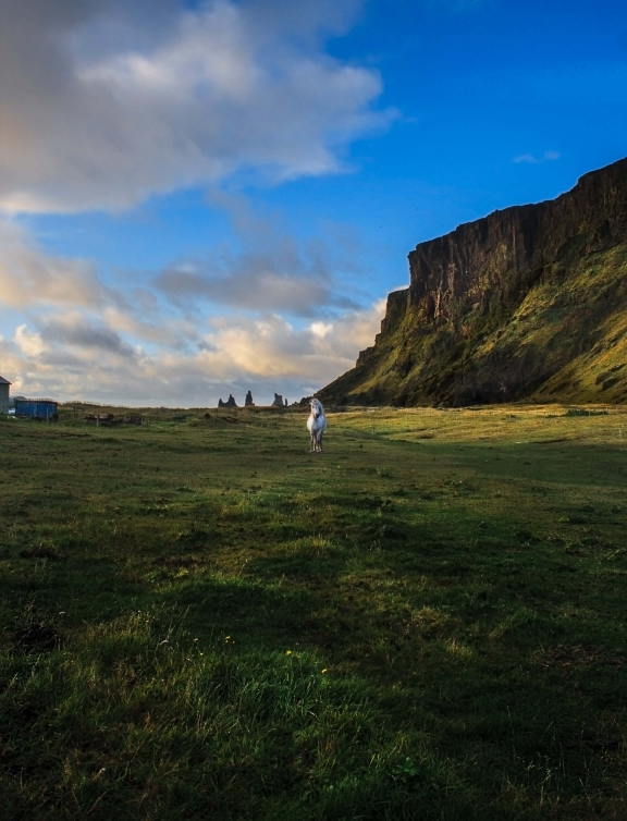 Iceland Vik Reynisdrangar