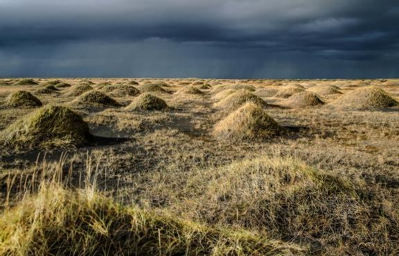 Iceland surtsey