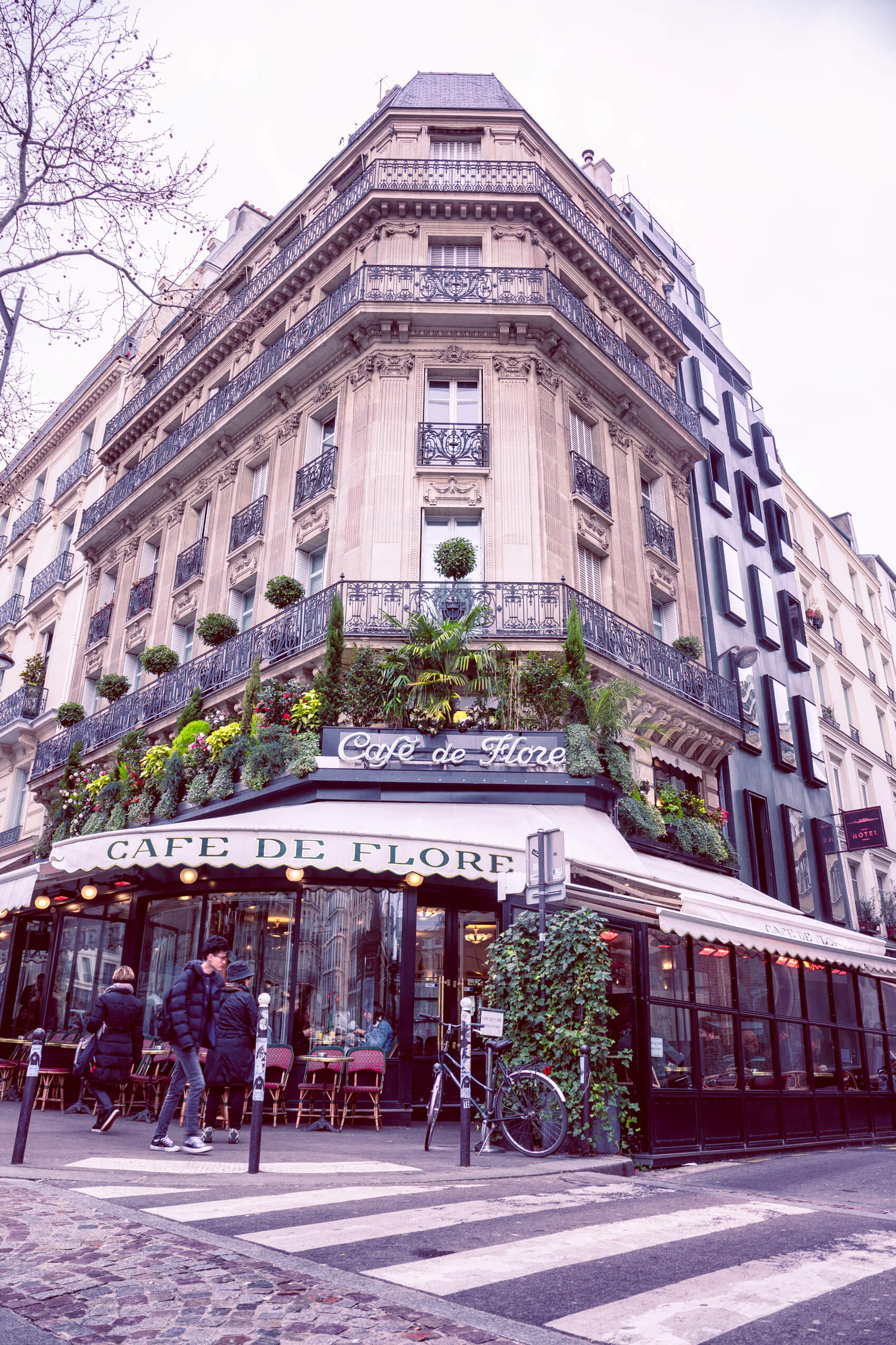 Paris Cafe de flore outside